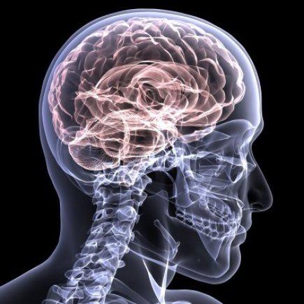 healing brain